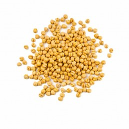 Chickpeas-Yellow-Roasted
