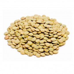 Green Laird Lentils Whole