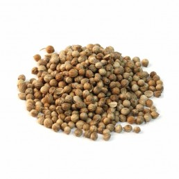 Whole-Coriander-Seed