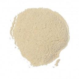 Fine Garlic Powder