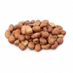 Whole Faba Fava Foul Beans